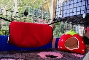 guinea pig cage fleece tunnel